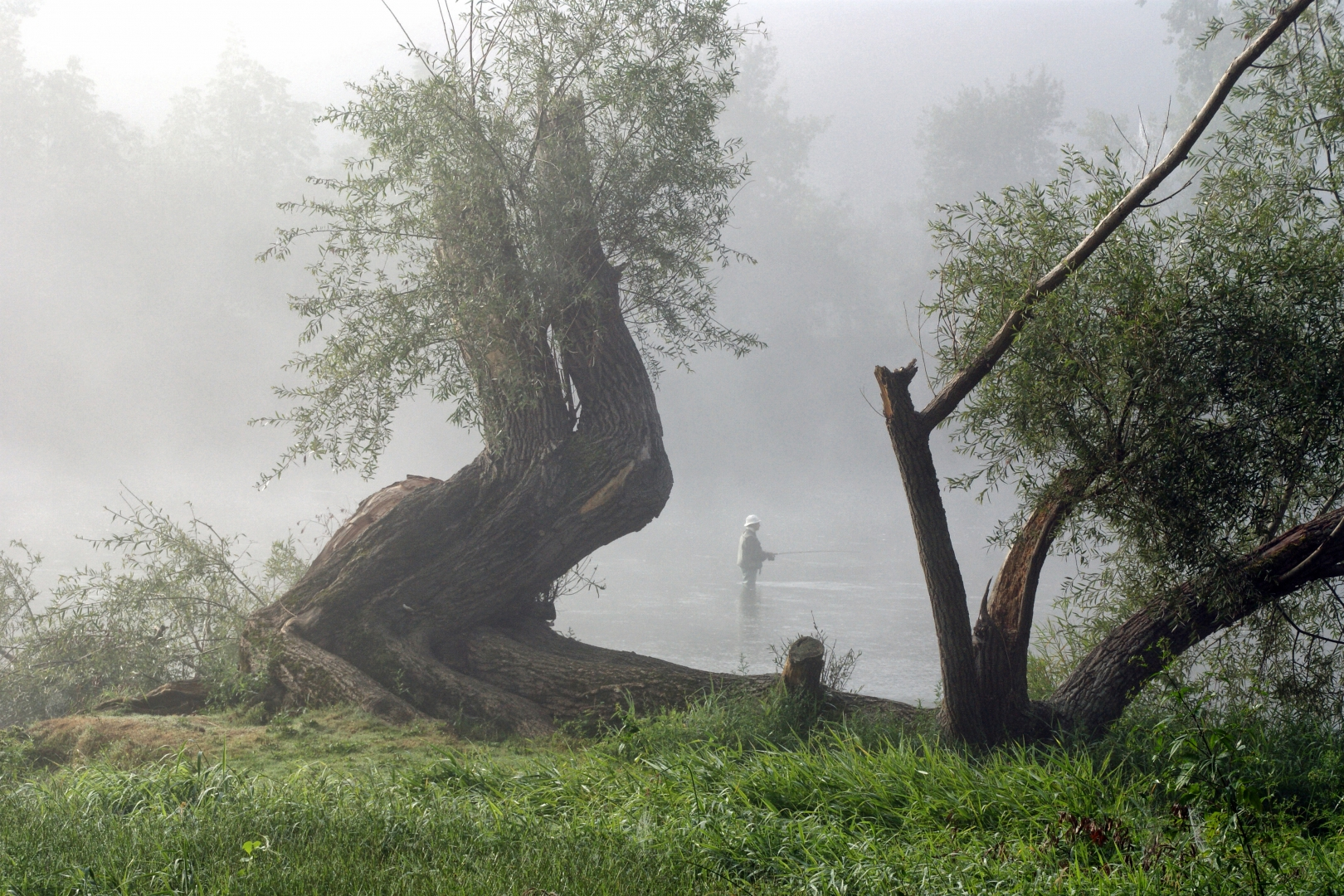 Morgenfisker i Dordognefloden FR.